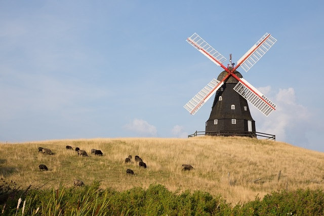 Denmark is known for its beautiful array of windmills and agriculture.