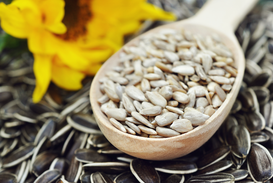 Spoon of dehulled kernels on sunflower seeds background, selective focus
