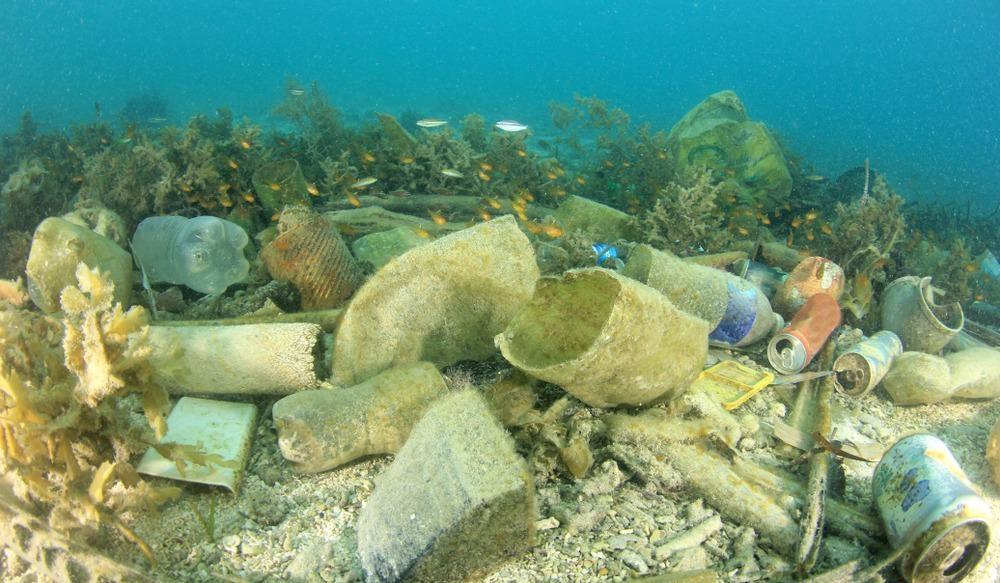 ocean, plastic, river flux