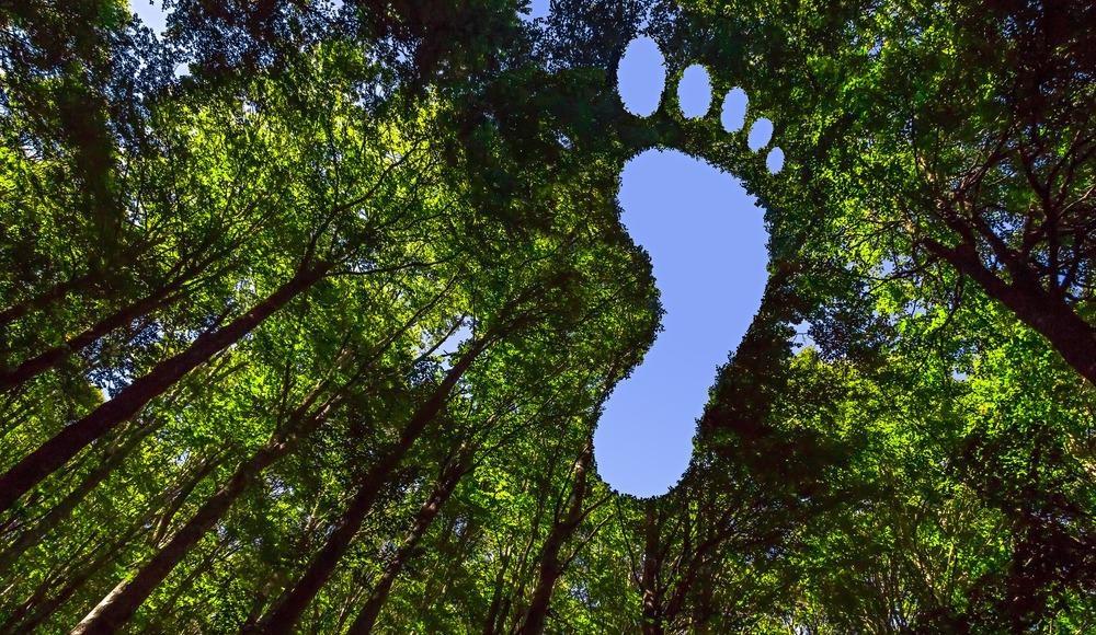 carbon footprint, carbon neutrality