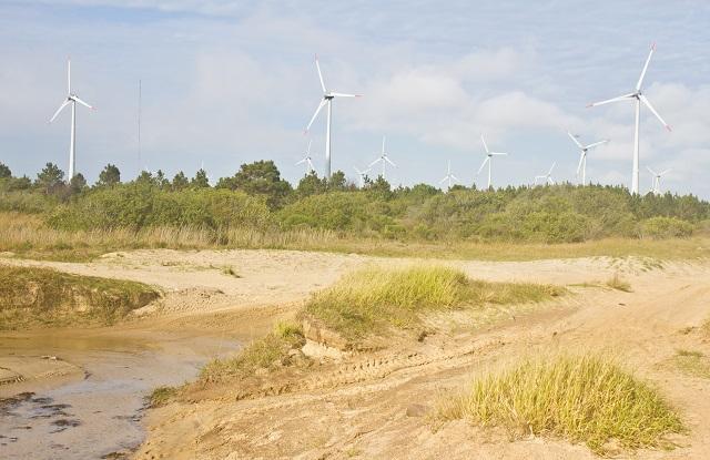 Wind power plant, Tramandai, Rio Grande do Sul, Brazil Image credit: Lisandro Luis Trarbach / Shutterstock.com