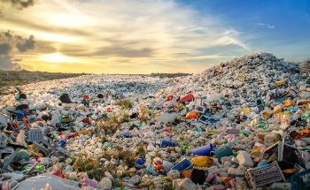 The World's First Naturally Biodegradable Plastic Alternative