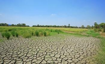 Combating Desertification and Drought: The Latest Developments