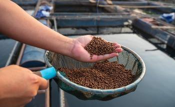 The Future of Sustainable Aquaculture