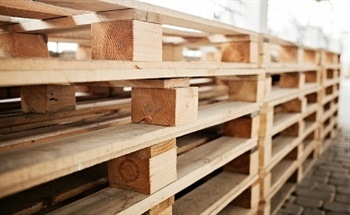 The Growing Need for Sustainable Pallet Materials