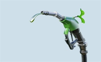 Developing Biofuels from Non-Food Plant Matter