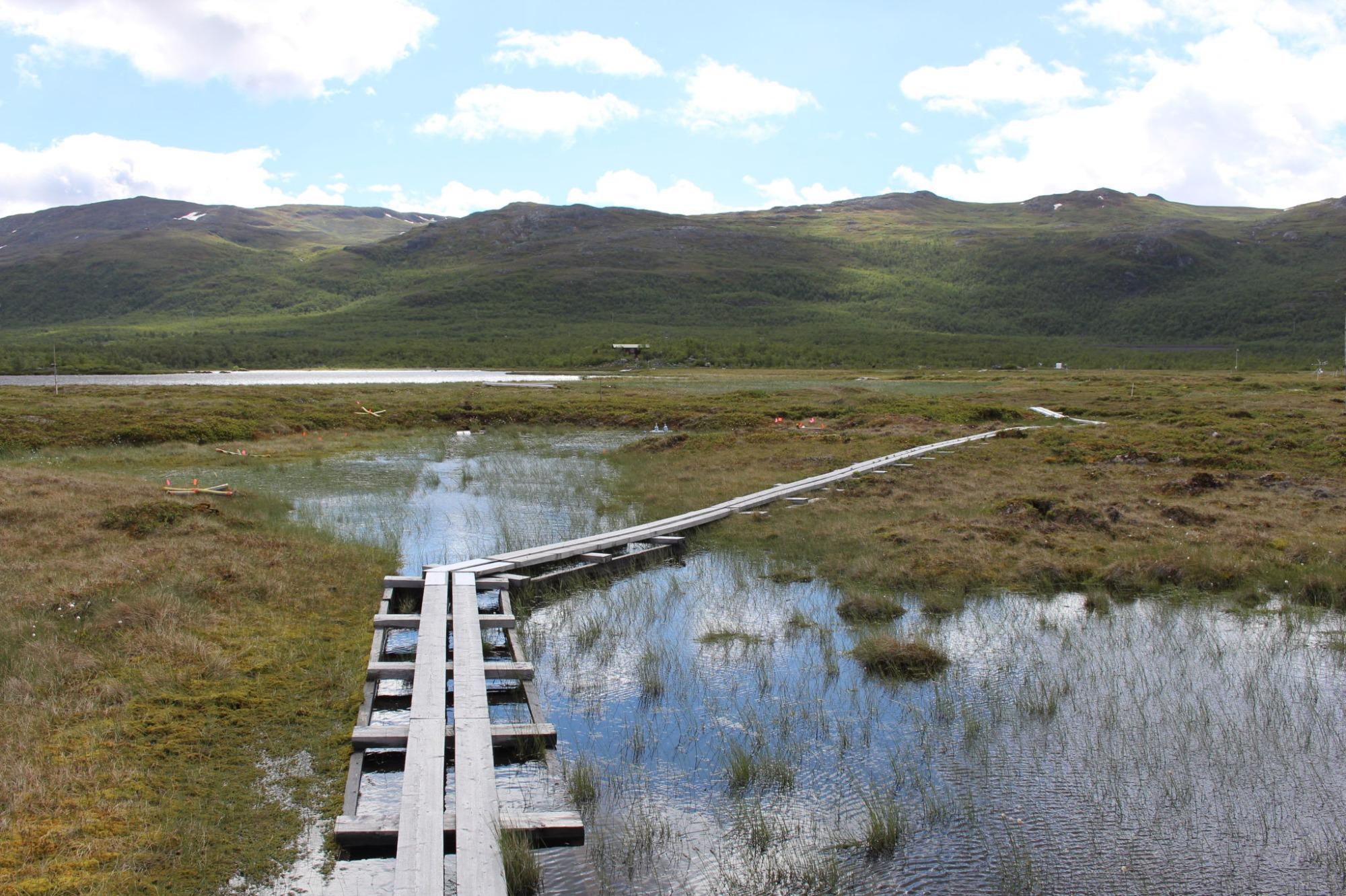 Rising Temperatures are Increasingly Thawing Permafrost Soils
