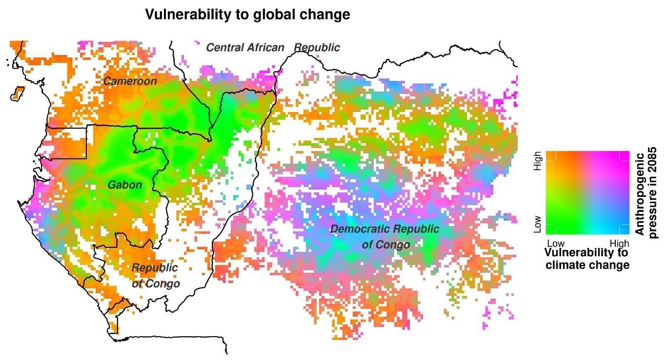 Study Shows the Significant Effect of Climate Change on Central African Forests