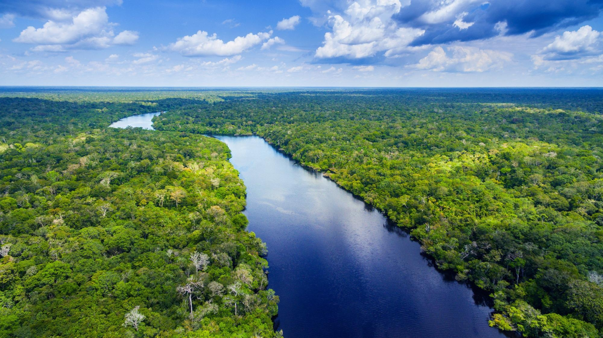 Indigenous Amazonia Populations may have Declined due to Climate Change Before Great Dying