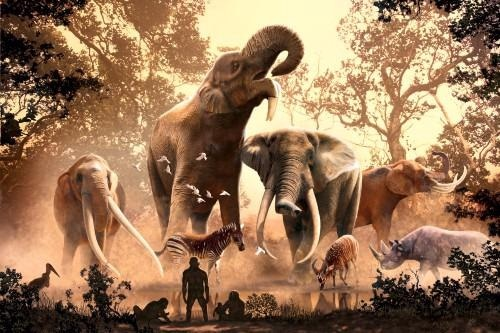 Climate Change Led to Extinction of Elephants and Their Forebears