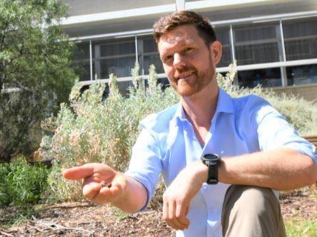 Planting Seeds for Revival of Vital Drylands
