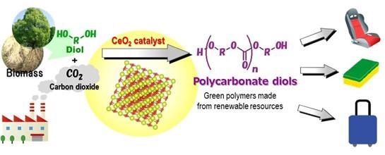 Researchers Successfully Synthesize Polycarbonate Diols from CO2 and Diols.