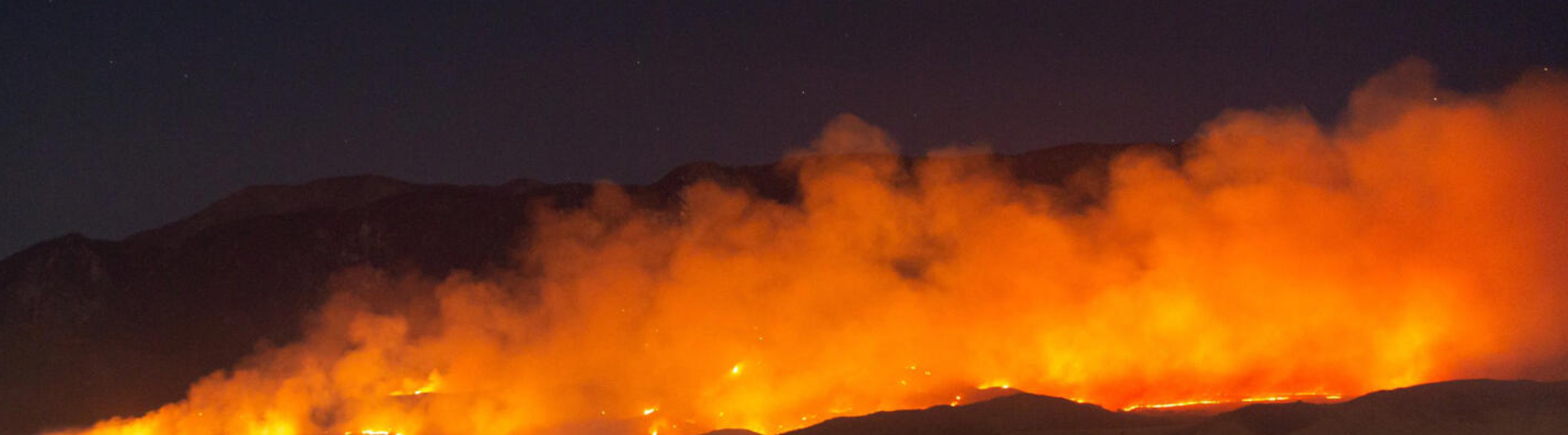 Wildfire Smoke Led to Excess COVID-19 Cases and Deaths.