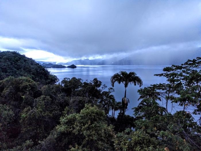 Warning Signs of Ecosystem Collapse Identified in Papua New Guinea Wetland.