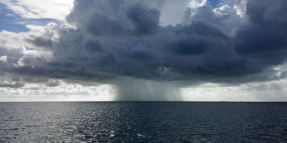 Study Reveals How Mercury Enters Seawater.