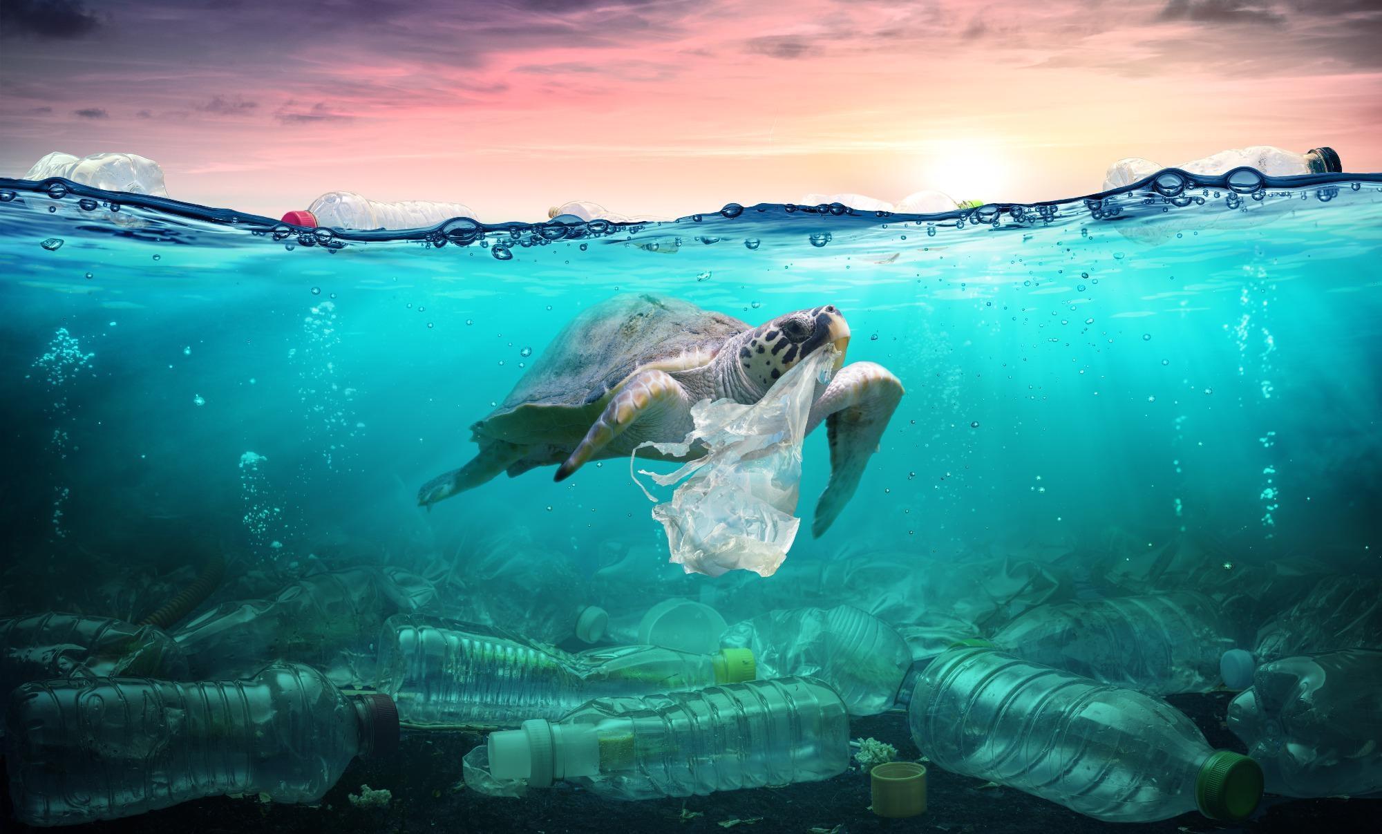 New Model to Trace the Fate of Plastic Debris in the Mediterranean Sea.