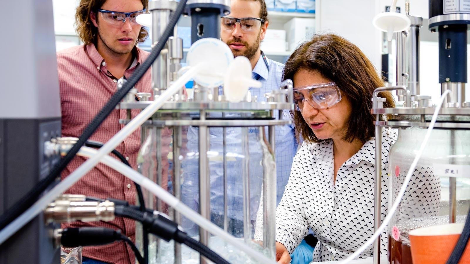 Innovative Research and Educational Collaboration to Boost the Development of Bioenergy Sector.