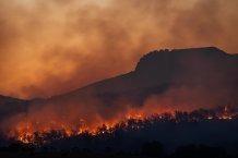 Climate Models Misinterpret Effects of Black Carbon Aerosols from Seasonal Fires.
