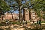 USGBC Awards LEED Gold Certification to Vanderbilt's New Warren and Moore Colleges