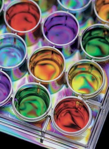 High Performance Filtration System for Paints & Coatings