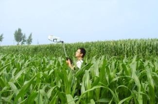 Researchers Identify the Most Efficient Strategy to Manage Nitrogen in Agriculture