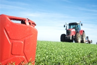Cover Cropping may Lead to More Sustainable Crop Production