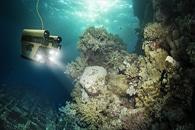 New Laser-Based Tool Helps Detect Algae Deep Inside Oceans