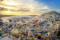 Human Health Impact of Marine Plastic Pollution is of Grave Concern to the Public