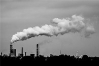 Experts Call for Immediate Action to Deal with Carbon Debt