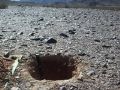 Disruption of Desert Soil Surface Results in Wind Erosion of Nitrate-Rich Soil