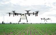 Global Warming Could Lead to Depletion of Soil Phosphorus