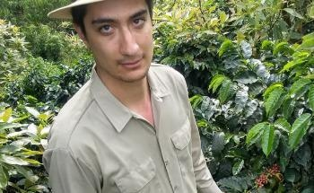 Study Shows Effect of Changing Climate Conditions on Colombia's Coffee Production