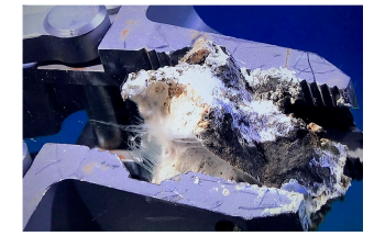 Deep-Sea Bacteria Release Excess Carbon into the Ocean and Atmosphere