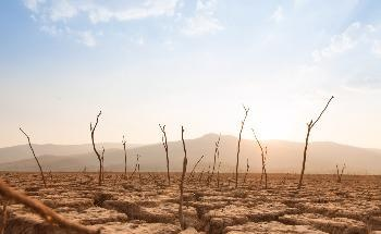Study Calls for Emergency Action to Limit Global Temperature Increases