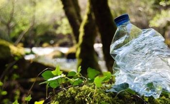 Plastic Pollution Clogs River Systems Longer than Previously Thought