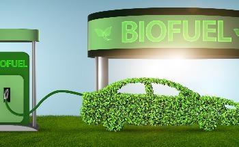Radiation Treatment to Convert Organic Waste into Renewable Biofuel Additives