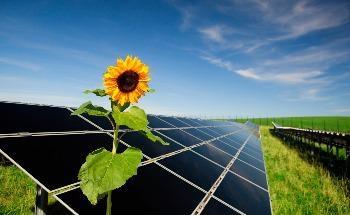 Hidden Potential of High-Efficiency Solar Cells Revealed